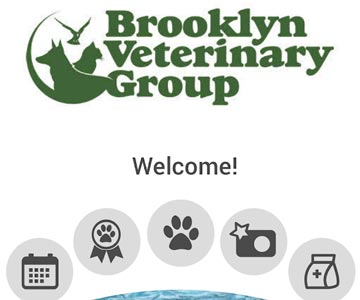 Brooklyn Veterinary Group has its own APP!