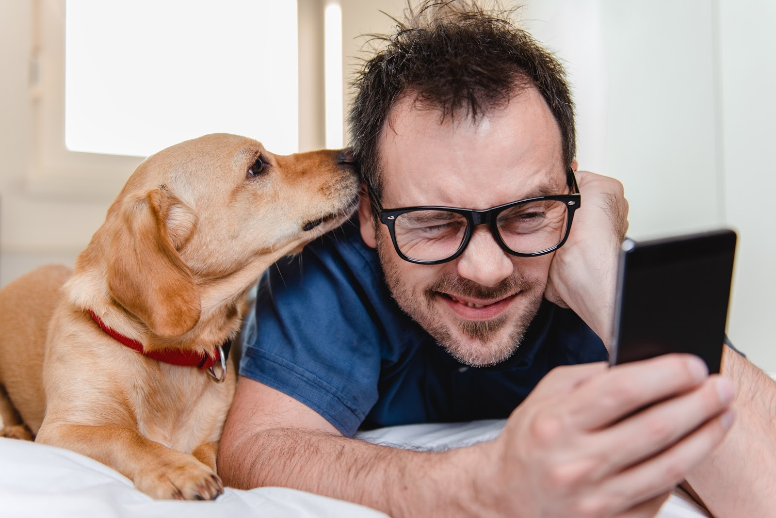 Our App Makes Caring For Your Pet Easier